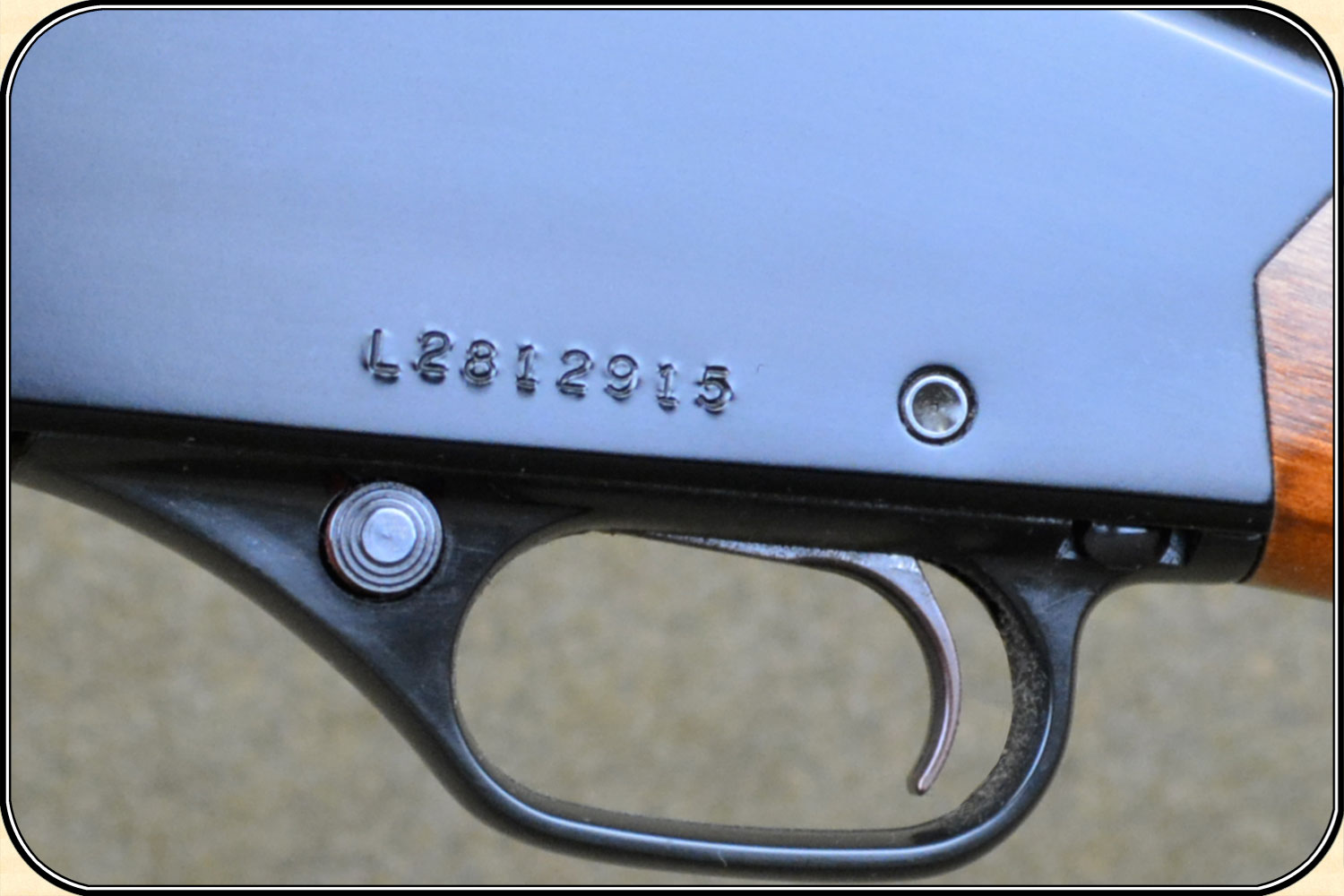 Winchester serial number info